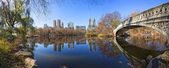Panorama of Central Park with Bow Bridge — Stock Photo
