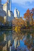 Central park with new york city skyline — Stock Photo