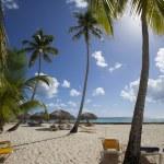 Paradise Beach — Stock Photo