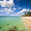 Paradise Beach — Stock Photo #18893391