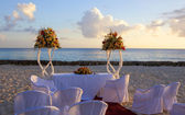 Wedding in tropic — Stock Photo