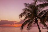 Sunset in Caribbean — Stock Photo