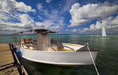 划艇 — 图库照片