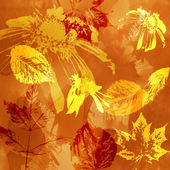 Art floral autumn background card — Стоковое фото