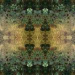 Art nouveau colorful ornamental vintage pattern — Stock Photo #16808027