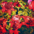 Art floral colorful watercolor background — Zdjęcie stockowe
