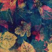 Art leaves autumn background card — 图库照片
