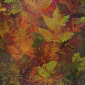 Art leaves autumn background, card — Stock Photo