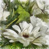 Umění květinové pozadí — Stock fotografie