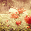 Art floral vintage colorful background — Stock fotografie