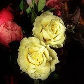 Umění květinové vinobraní barevné pozadí — Stock fotografie
