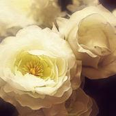 Arte floral vintage base colorida — Fotografia Stock