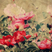 Fond de coloré vintage art floral — Photo