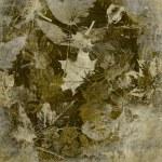 Art leaves autumn background, card — Stock Photo #29638187