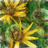 искусство цветочный фон — Стоковое фото