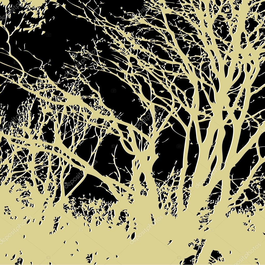 森林— 矢量图片作者 irina