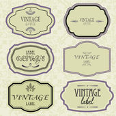 Art set of vector vintage frame lable — Stock Vector