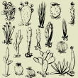 Art set of sketching vector cactus symbols — Stock vektor