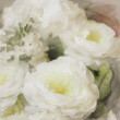 Stock Photo: Art floral vintage watercolor background with white roses