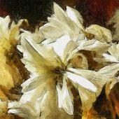 Sanat çiçek vintage kahverengi ve beyaz arka plan beyaz aster ile — Stok fotoğraf