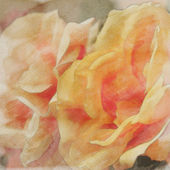 Art floral vintage watercolor background with light orange roses — Stock Photo