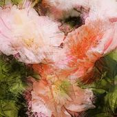 Art vintage floral blurred background with pink peonies in garden — Stock Photo