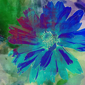 Art floral vintage blue and green background with asters — Stock Photo