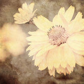 Art floral vintage sepia background — Stock Photo