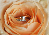 Ring mit rose — Stockfoto