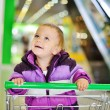 Royalty-Free Stock Photo: Happy shopping baby