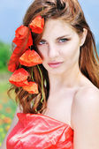 Poppies passion — ストック写真