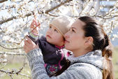 Woman with child near the blossom tree — Stock Photo