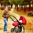 Womwith stroller — Stock Photo #23548859