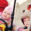 Friends in strollers — Stock Photo #24019431