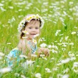 Toddler girl on the daisy meadow — Stock Photo