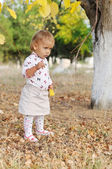 Toddler in fall — Stock Photo