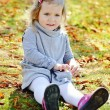 Toddler girl in autumn park — Stock Photo #34564967