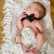 Newborn gentleman — Stock Photo