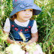 Stock Photo: Toddler in the green grass