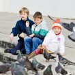 children feeding doves — Stock Photo