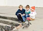 Children and doves — Stock fotografie