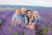 Family in lavender field — Stock Photo