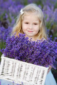Girl  in lavender field — Stock Photo