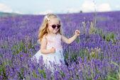 Flicka i lavendel fält — Stockfoto
