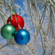Three colour balls on a pines branch — Stock Photo #1357293