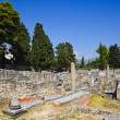Stock Photo: Old ruins in Salona