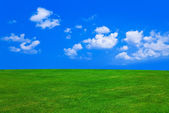 Grass and cloudy sky — Stock Photo