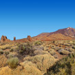Stock Photo: Volcano Teide in Tenerife island - Canary