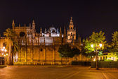 Cathedral La Giralda at Sevilla Spain — Stok fotoğraf