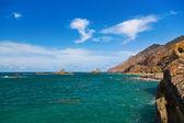 Coast in Tenerife island - Canary Spain — Stock Photo